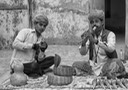 snake charmers copy